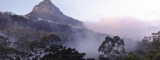 Drink tea and explore the mountainous region