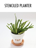 Yay! Plants!