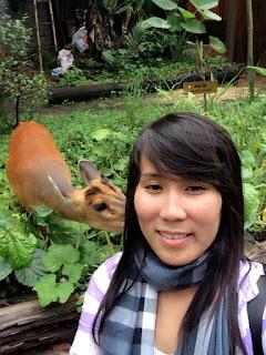 Thienhuong360: Xin đừng giết hại động vật