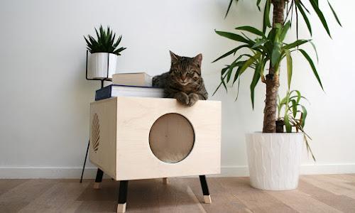 Cama moderna para gatos