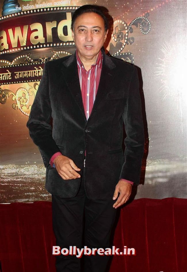 Anang Desai, ITA Awards 2013 - Red Carpet Pics