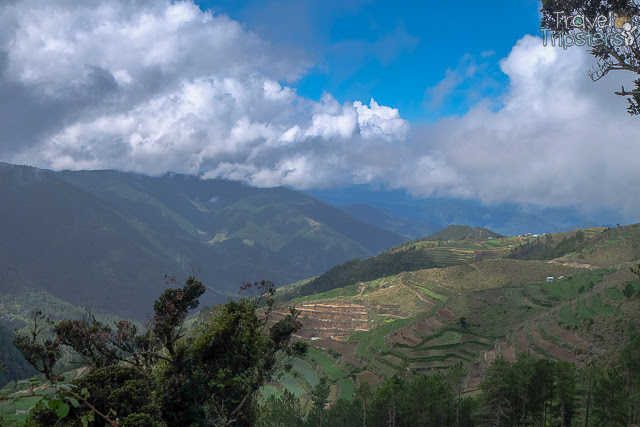 Cordillera Mountains and the Plantations
