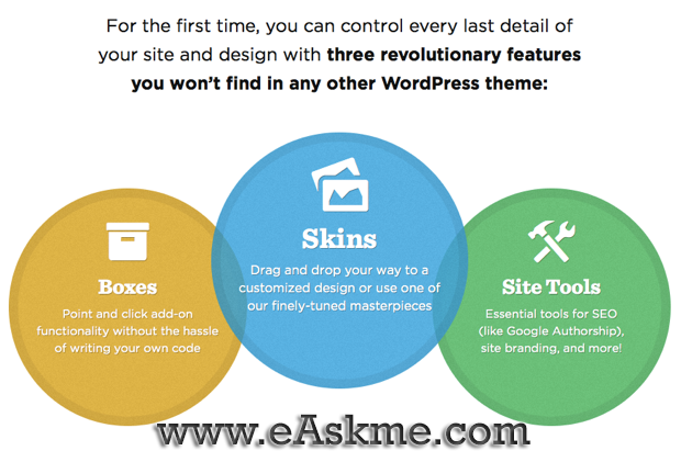 Thesis WordPress Theme : eAskme