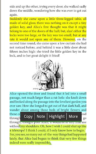 Universal Book Reader - Texto Marcado