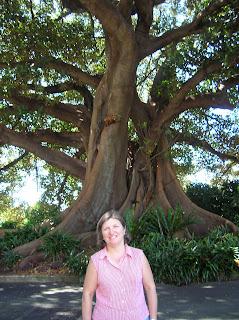 Royal Botanic Garden, Sidney, Sydney, Australia, vuelta al mundo, round the world, La vuelta al mundo de Asun y Ricardo
