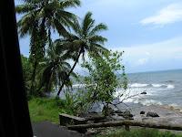 costa de tahiti, polinesia francesa,vuelta al mundo, round the world, información viajes, consejos, fotos, guía, diario, excursiones
