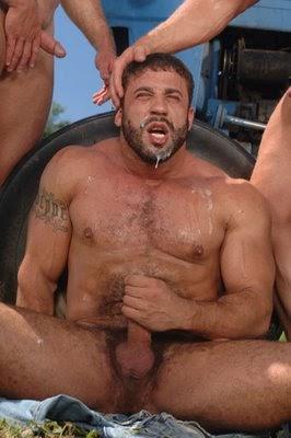 roma palestre gay