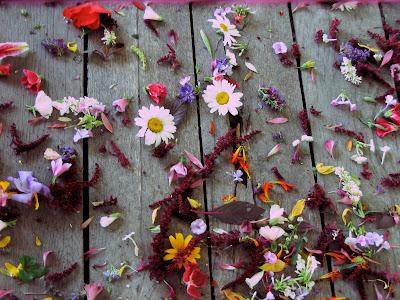 mixed color flower petals for a wedding