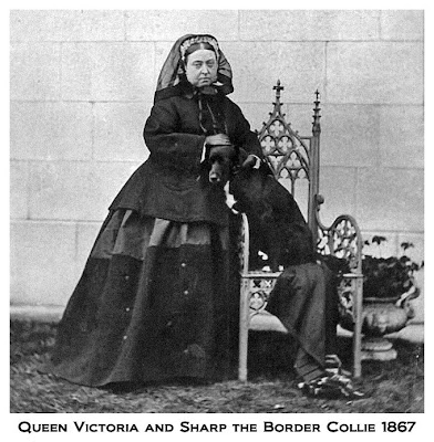 Victoria at Balmoral Sharp border collie 1867