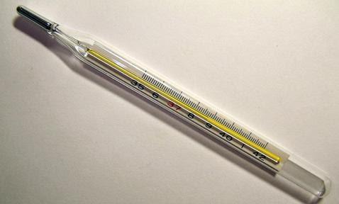 Fisica Y Termodinamica Termometros Y Escalas De Temperatura Los mejores termometros para usos industriales. fisica y termodinamica blogger