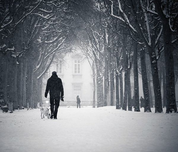 walking in the snow - photo #20