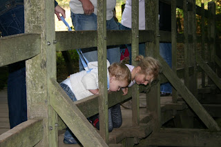 Top Ender and Baby Boy peering over the edge of Pooh Bridge