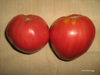 ντομάτα-καρδιά βουβαλιού