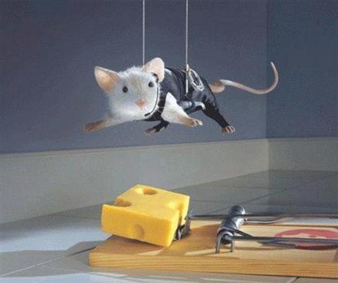 mouse%2Bcheese%2Btrap.jpg