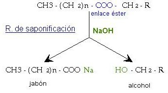 Saponificacin  Reaccin qumica del jabn  Qumica