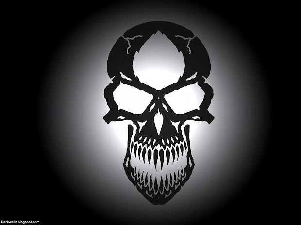 Download Cool Skull Backgrounds