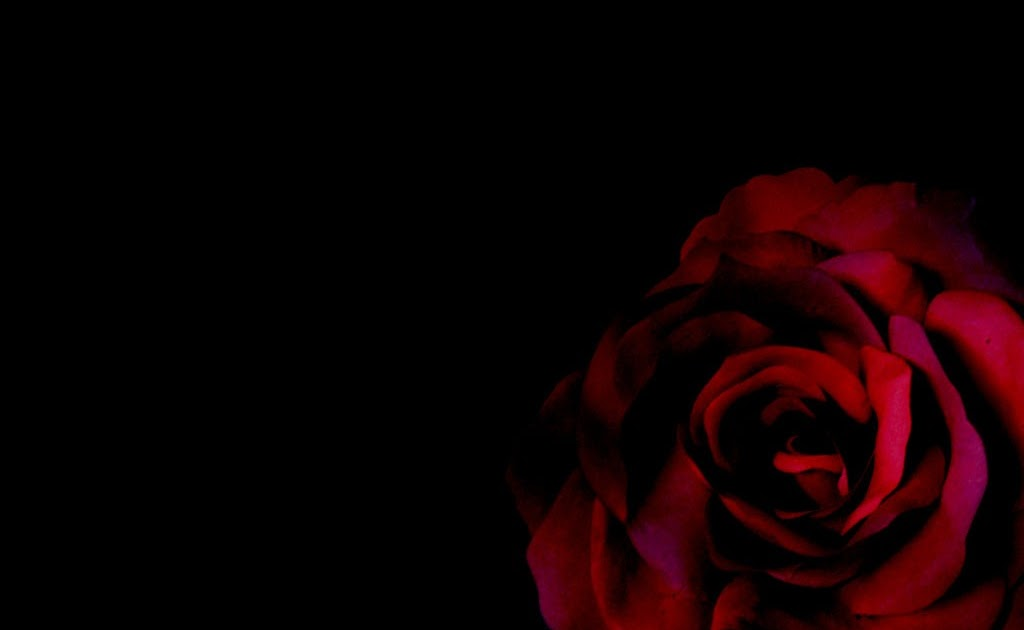 Occult Wallpapers Hd Gothic Rose Dark Gothic Wallpapers Free Gothic