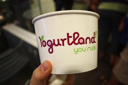 The Frustrated Cowgirl Two Girls and Yogurtland