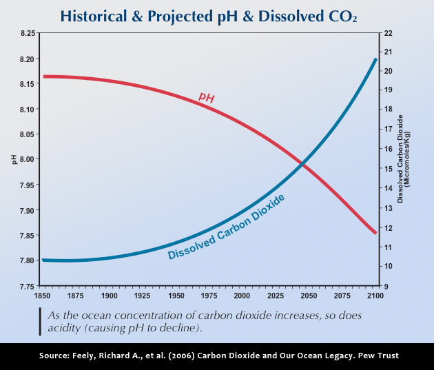 relationship between carbon dioxide and dissolved oxygen