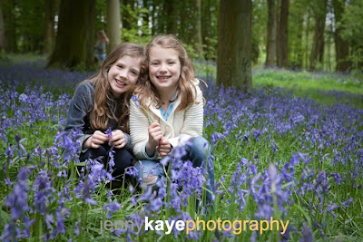The bluebell woods again!