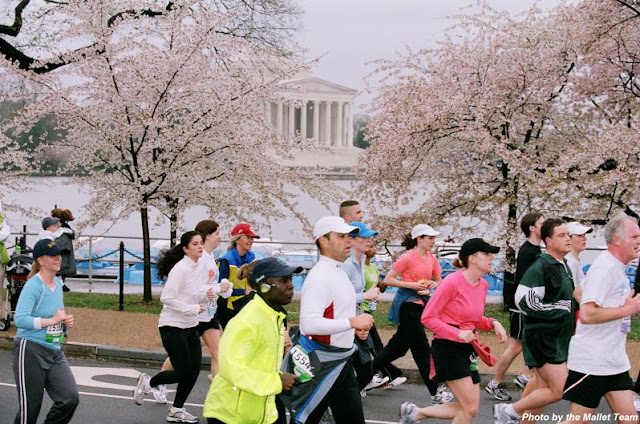 The 30 Before 30 Project: Cherry Blossom 10-mile Run