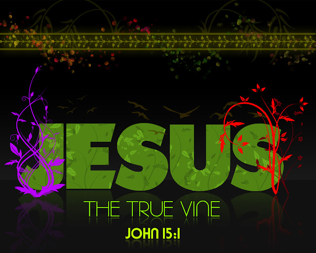 True Vine Productions wallpaper Jesus the True Vine John 15 verse 1
