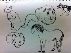random stuff sketch