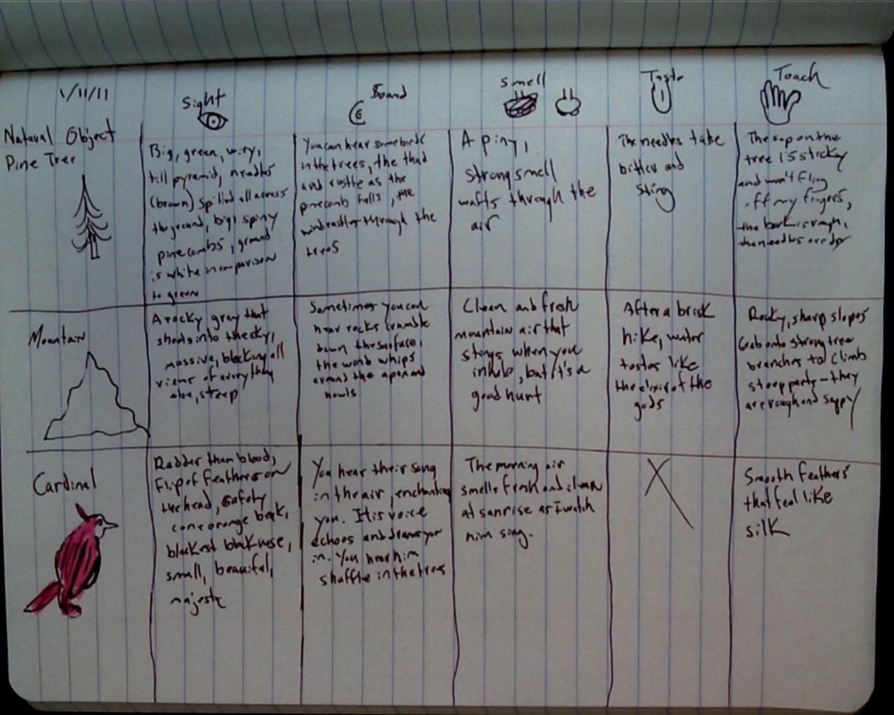 Mr  Del Ferraro's English 8 Class: Using Sensory Details in