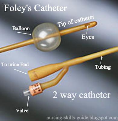 Nursing Skills Guide Foleys Catherter