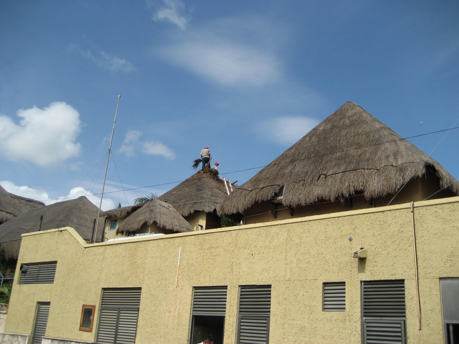 Living Rootless Repairing A Palapa Roof