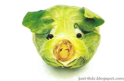 funny food cabbage