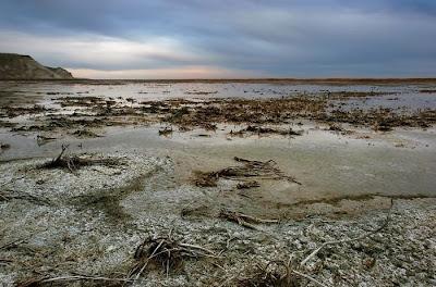 aral sea 03 Aral Sea, Laut Yang Mengering