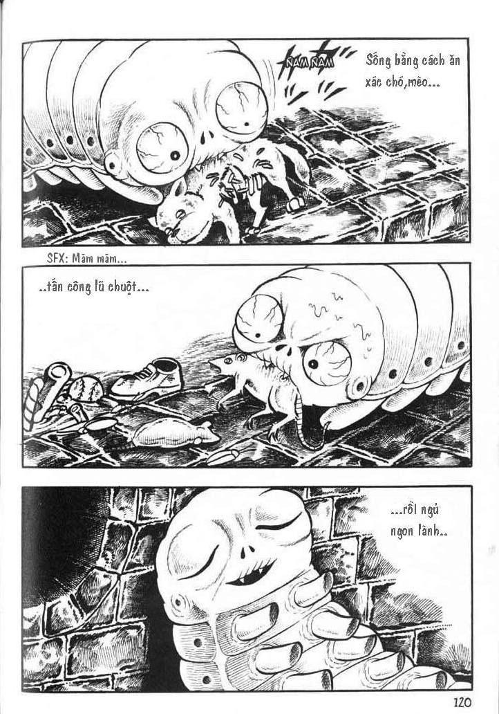 The Bug Boy chap 4 trang 12