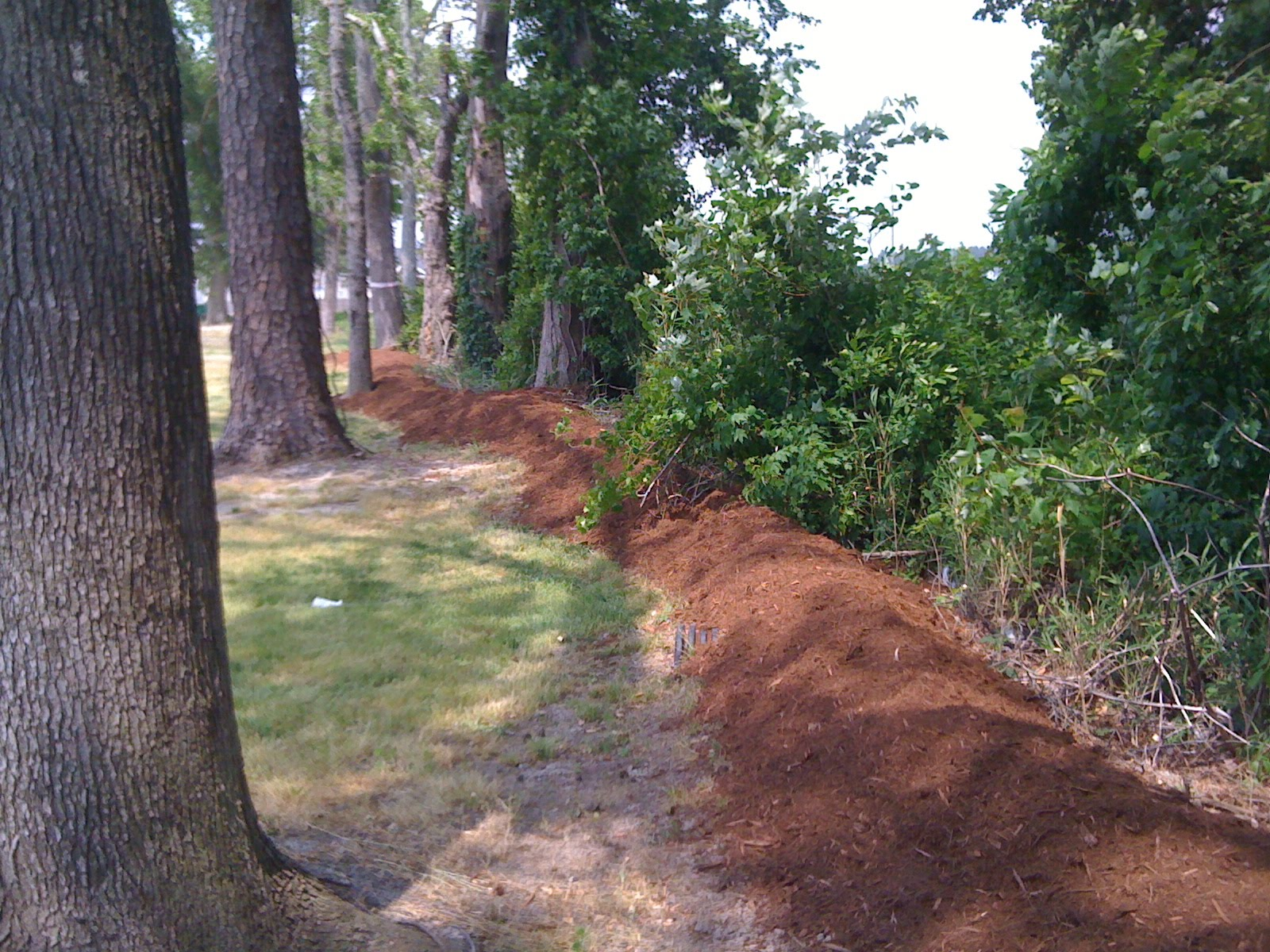 That S So Martha I Have Been Very Busy Backyard Berm