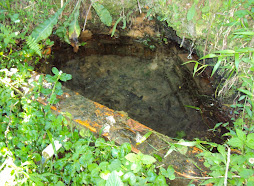 Fonte Água Mineral Sitio Saltinho Mafra SC