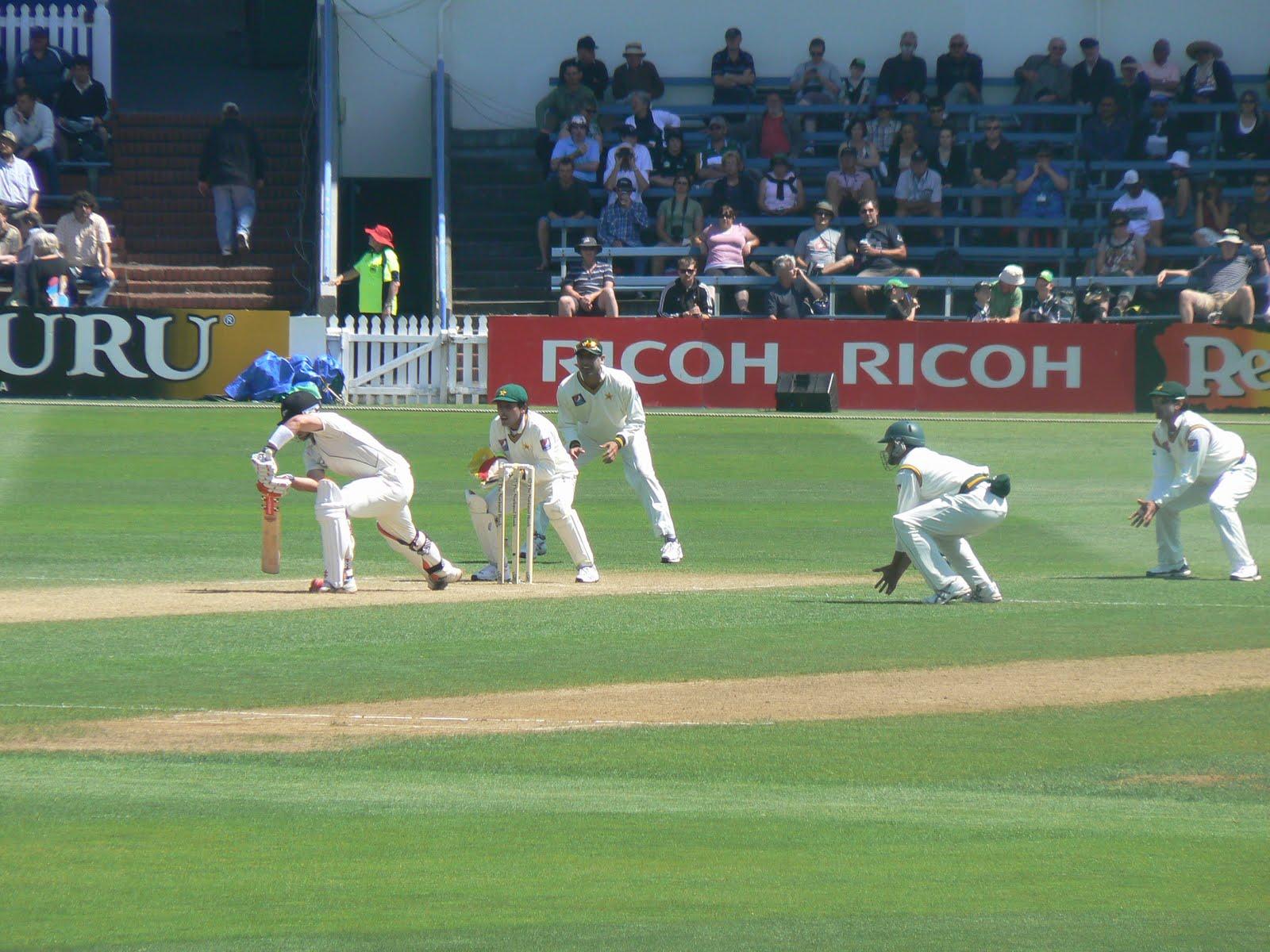 cricket - photo #33