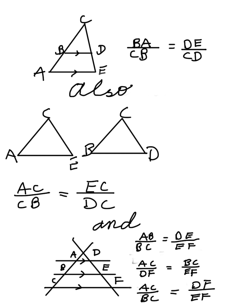 Geometry: PROPORTIONS AND SIMILARITY