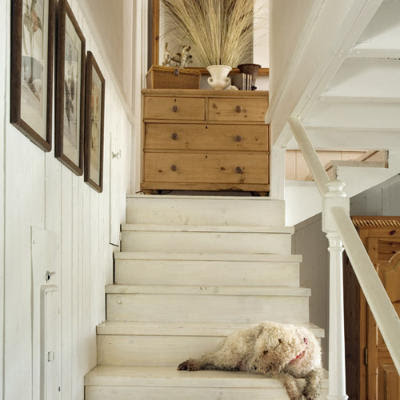 Natural Decor Architectural Inspiration White Washed