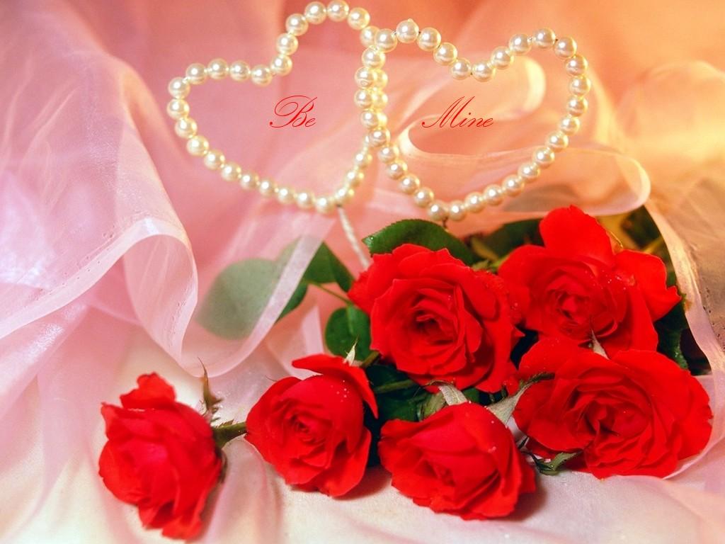 10 Wallpaper Bunga Cantik Gambar Bunga Foto Bunga Wallpaper