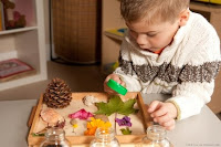 NAMC montessori prepared environment subject areas classroom design boy looking at plants