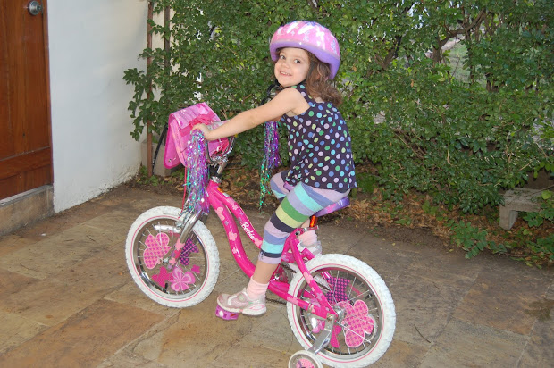 Read Saenz Ride Bicycle