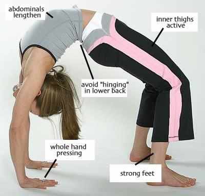 learn yoga online  yoga class  free yoga tution  yoga