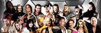 ท่าไม้ตาย นักมวยปล้ำ WWE