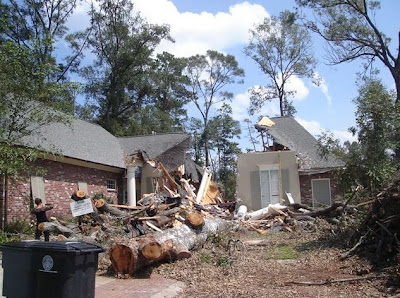 Tree splits house in 2