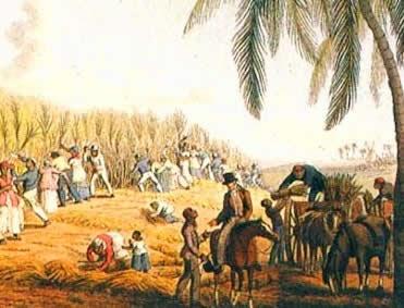 Facilitando a História...: Brasil Colônia