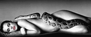 O espírito da serpente
