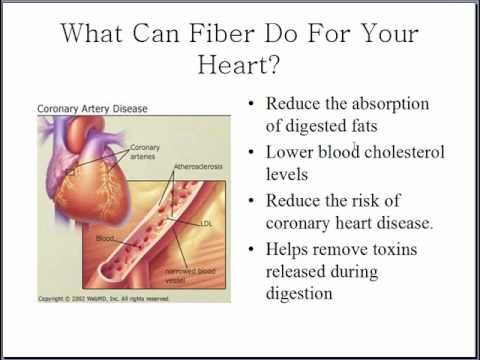 Fibre in food