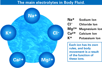 What are electrolytes..???
