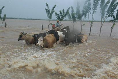 Resultado de imagen para fotos de inundaciones en el bajo yuna