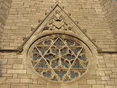 15 Plants That Teach Us Sacred Geometry  |Ancient Sacred Geometry